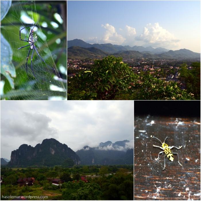 As montanhas no Laos