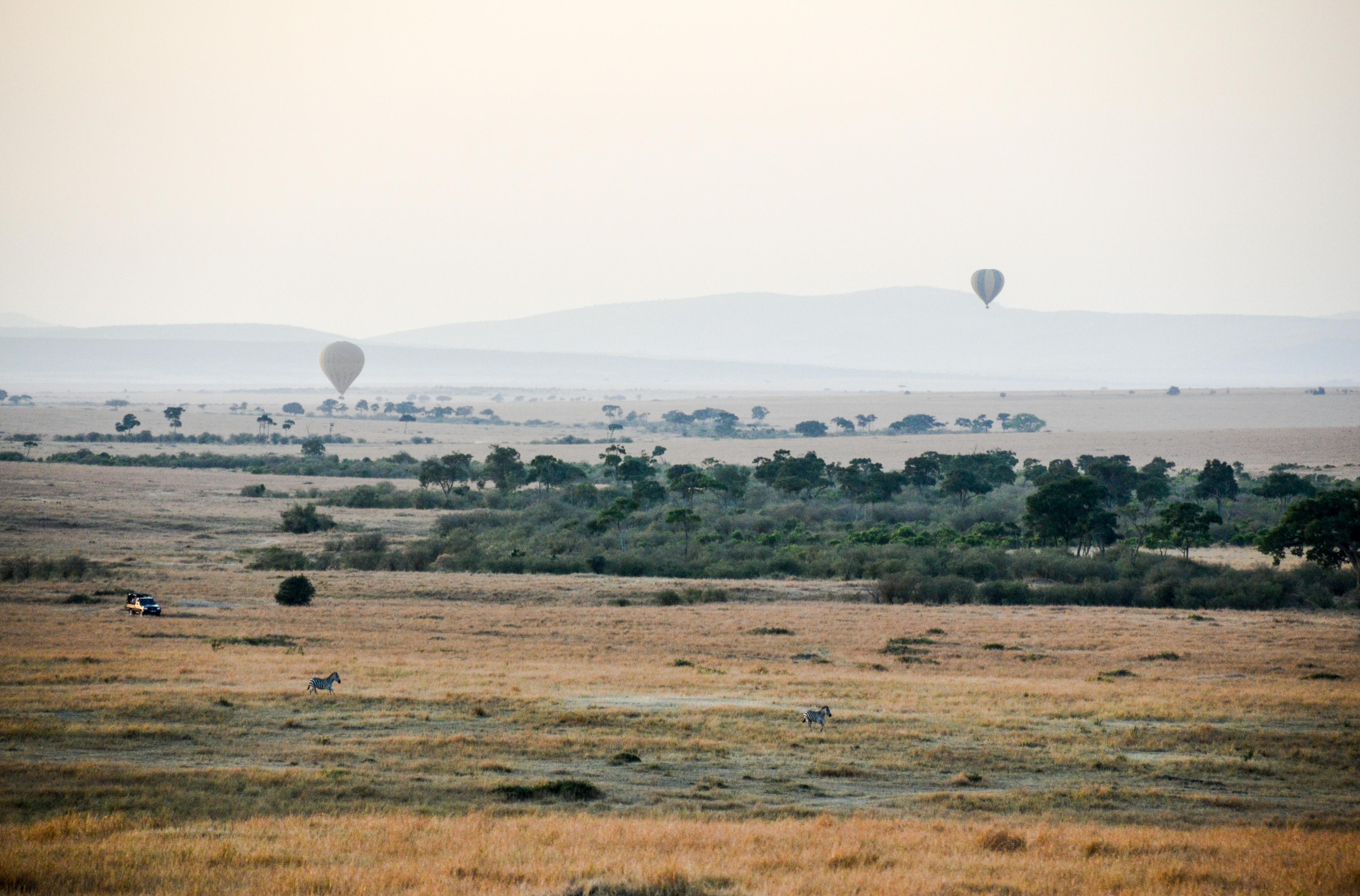 Masai Mara, Quénia