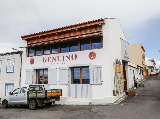 P1030392_edited-genuino1